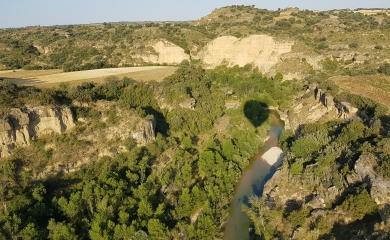 Paseo en globo río Alcanadre
