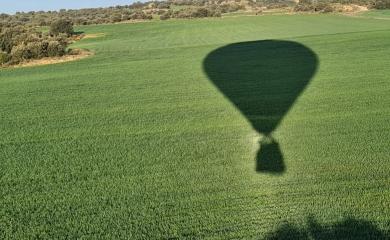 Sombra cereal vuelo en globo Alerre